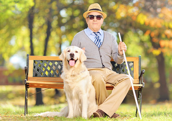 Oudere blinde man met stok en geleide hond